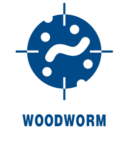 woodworm icon
