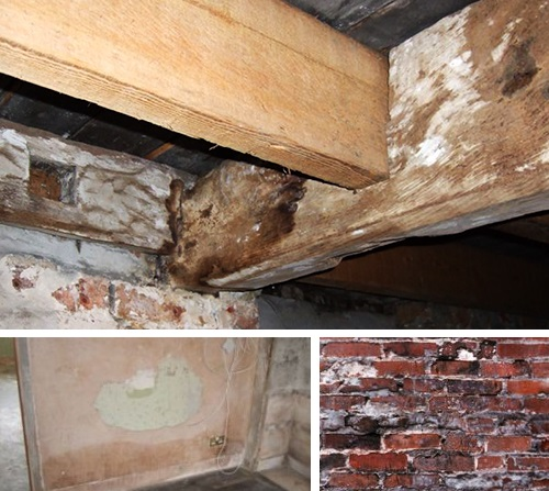 dry rot treatments in manchester