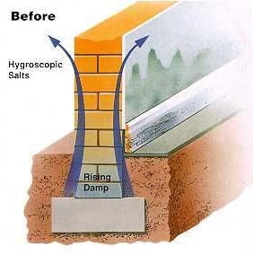rising damp treatments for homeowners in Widnes