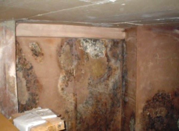 identifying and treating penetrating damp in manchester