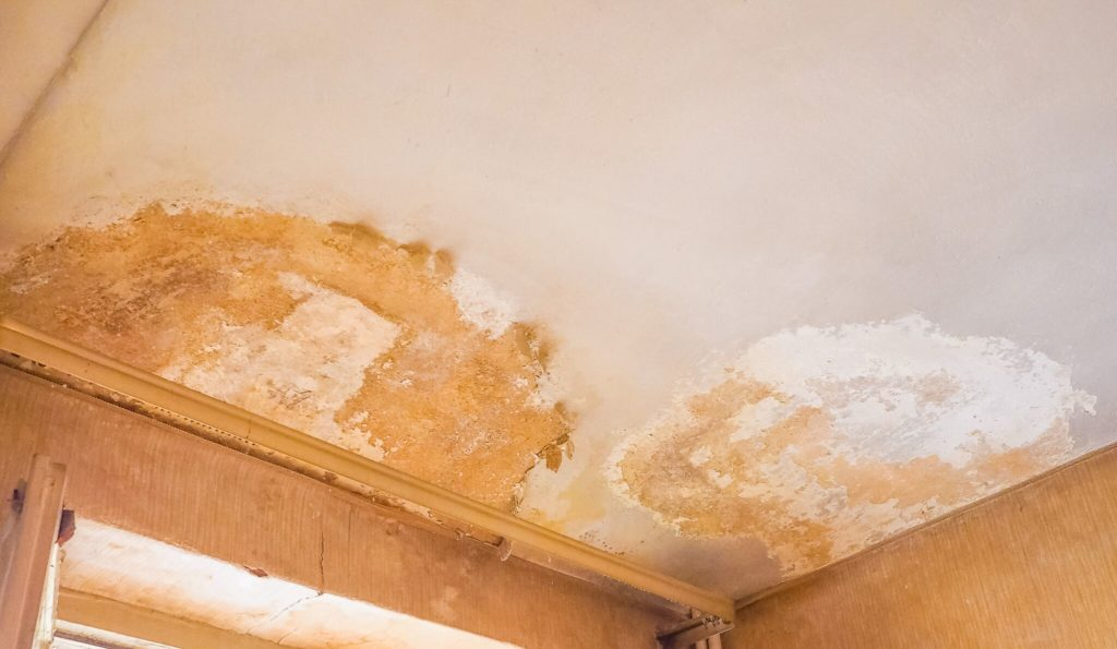 identifying penetrating damp