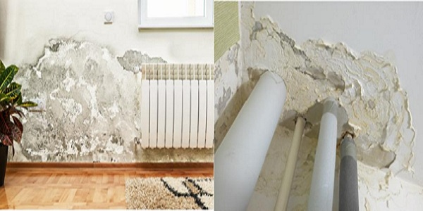 spotting the signs of rising damp in your property