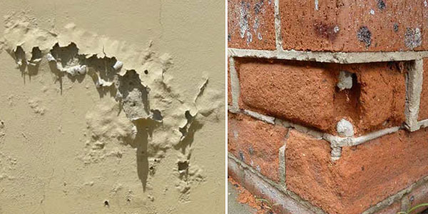 spot the signs of rising damp in your home